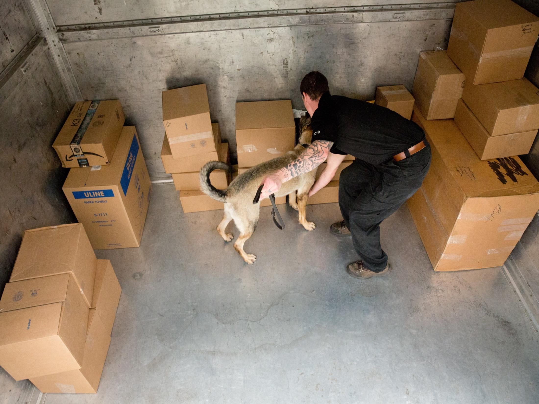 MSA Canine Team Sweeping Cargo Area