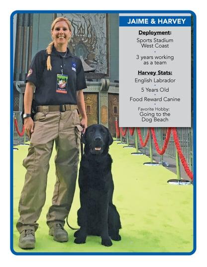 DogCards-Jaime-and-Harvey