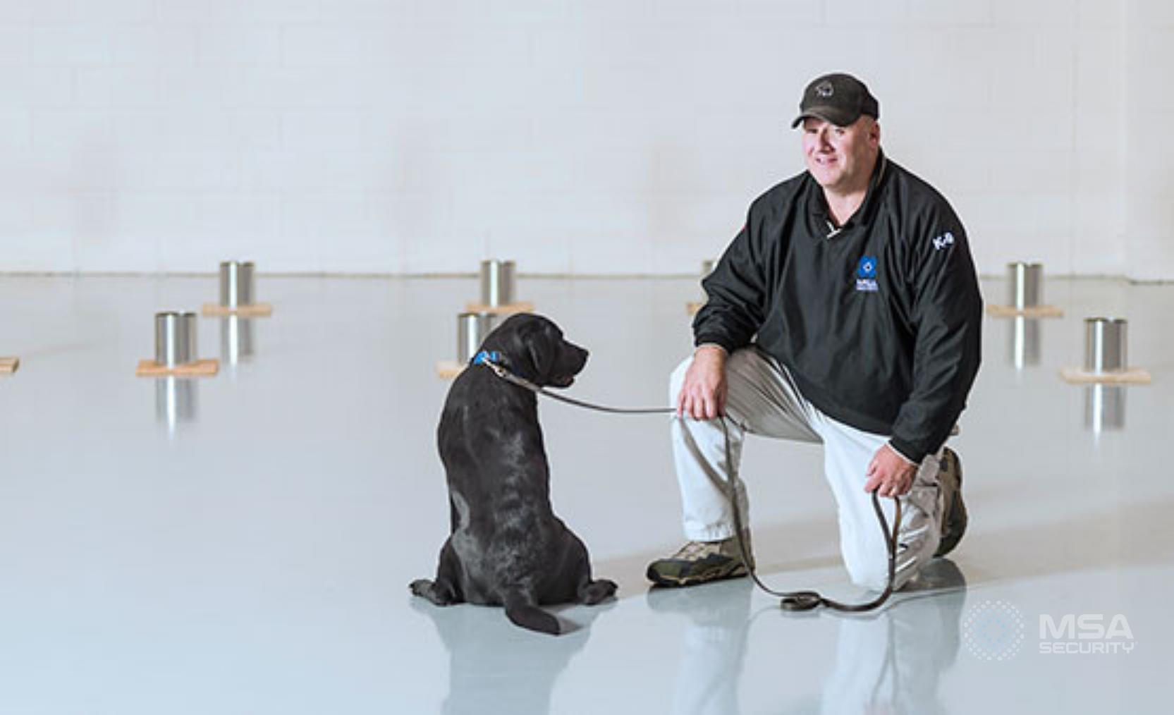 canine partner watermark